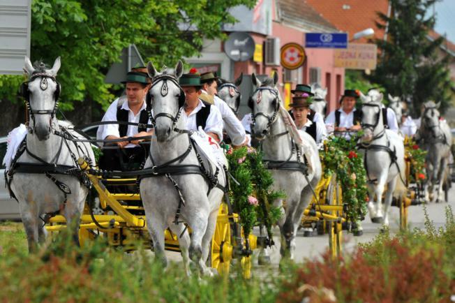 """Održani jubilarni, 40. """"Konji bijelci"""" – jamstvo opstojnosti tradicije i običaja"""