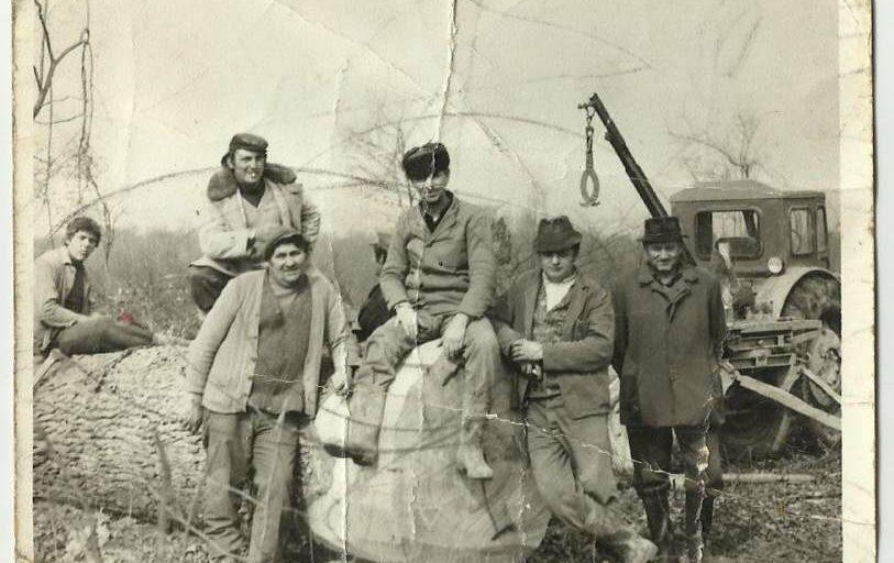 Ivica Ćosić Bukvin: Iskorištavanje šuma Spačvanskog međuriječja 1730.-1914.